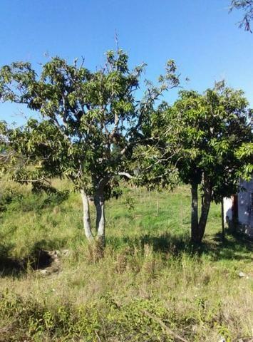 ::Cód: 118 Terreno no Bairro Monte Alegre em Cabo Frio - Foto 2