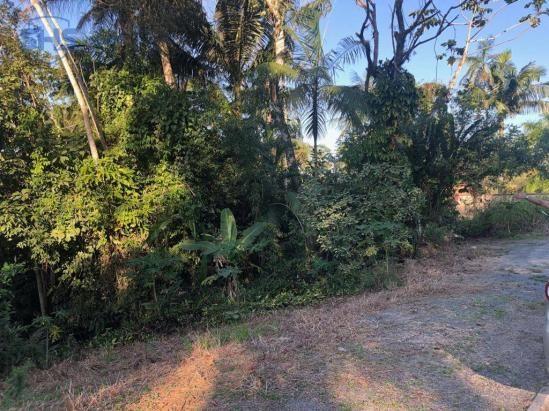 Terreno à venda, 600 m² por r$ 350.000 - bom retiro - blumenau/sc - Foto 5