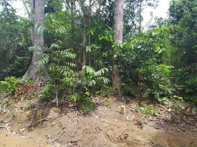 Terreno à venda Trancoso, Bahia - Foto 2