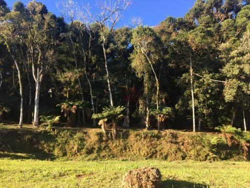 Terreno amplo no belo condomínio Quinta da Serra - Foto 18