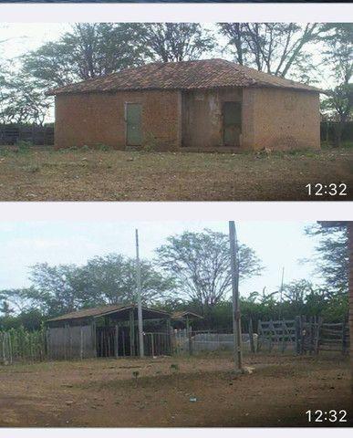 Fazenda com 90 ha em João Dourado - Foto 6