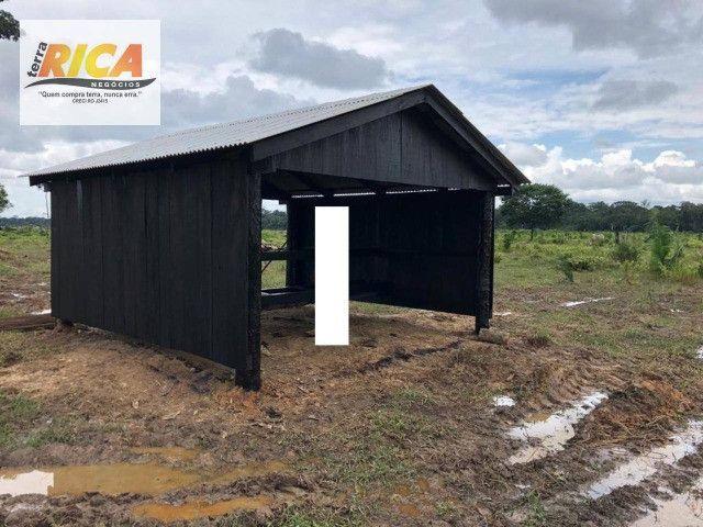 Fazenda a venda com 1.151 hectares no município de Canutama- AM - Foto 6