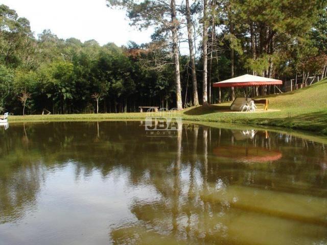 Chácara à venda em Miringuava, São josé dos pinhais cod:12972.001 - Foto 8