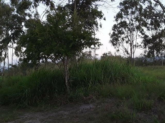 Chácara em Gravatá com 9 hectares, casa sede, 6 suítes, piscina com apoio, vista da BR-232 - Foto 10