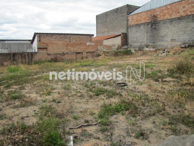 Terreno à venda em São francisco, Belo horizonte cod:717333 - Foto 7