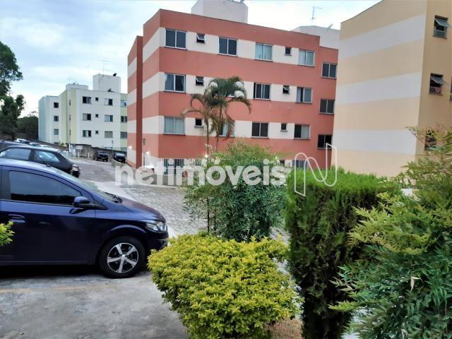 Apartamento à venda com 2 dormitórios cod:776574 - Foto 17