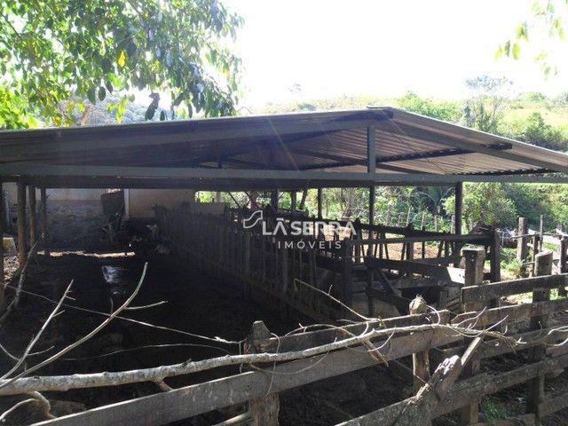 Fazenda à venda - Foto 17