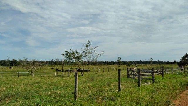 Fazenda a venda Com 746 equitares *parcelo  - Foto 5