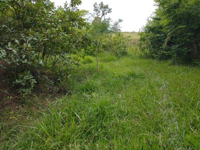 Sítio, Chácara a Venda em Porangaba e Região 48.400 m², 2 Alqueres, Zona Rural - Porangaba - Foto 5
