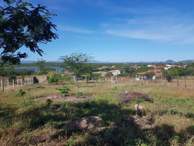 Terreno no Mucambo - Patos/PB - Foto 3