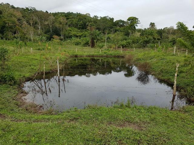 FZ 037- Fazenda Próximo a Ipiaú ? BA com 30 hectares. - Foto 8