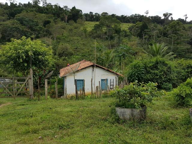 FZ 037- Fazenda Próximo a Ipiaú ? BA com 30 hectares. - Foto 12