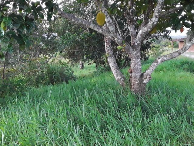 Chácara em Gravatá com 9 hectares, casa sede, 6 suítes, piscina com apoio, vista da BR-232 - Foto 18