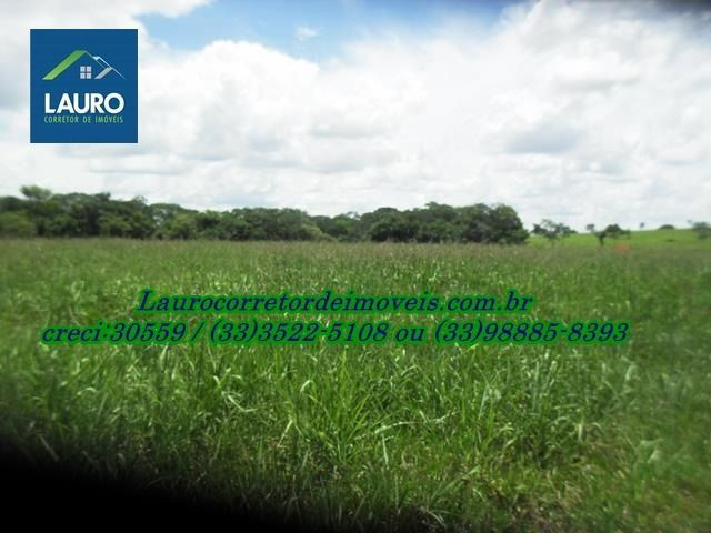 Fazenda com 1.000 hectares na Região de Curvelo-MG - Foto 14