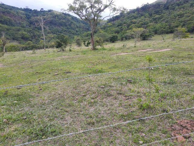 Fazenda em capetinga 92 alqueires 5.000.000.00 - Foto 18