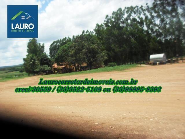 Fazenda com 1.000 hectares na Região de Curvelo-MG - Foto 2