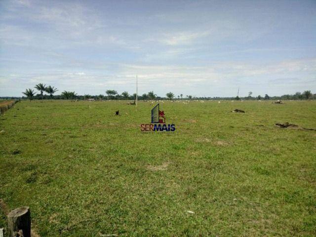 Fazenda à venda, por R$ 3.888.000 - Zona Rural - São Francisco do Guaporé/RO - Foto 5