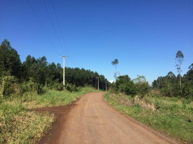 Chácrinha a 8 km do centro de Estância Velha