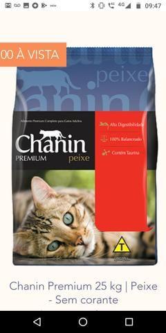 Ração chanin Premium sem corantes 25 kg
