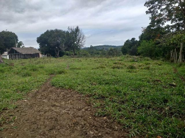 Vendo sitio em Apuarema ba - Foto 3