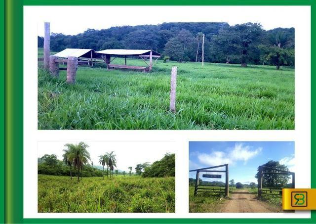 Fazenda em Cáceres - Foto 3