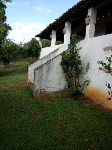 Sitio formado com toda infraestrutura, Zona Rural 65km de Recife - Foto 15