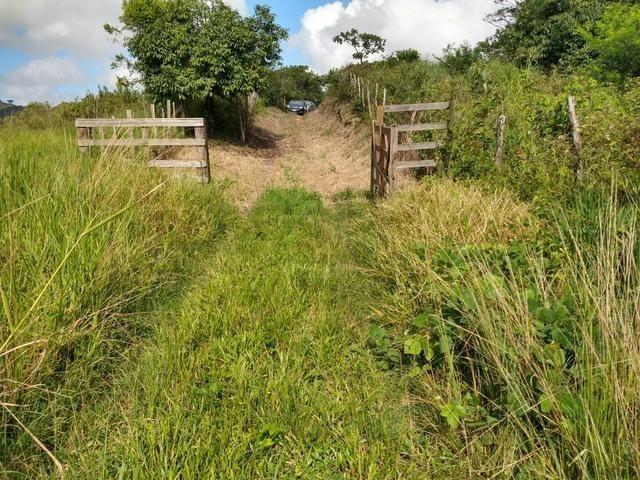 9 hectares nas Margens da BR 232 a 25 km de Recife PE - Foto 7