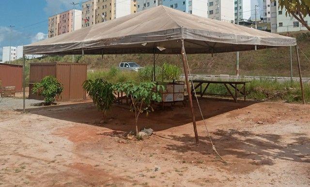 Tenda - Foto 4
