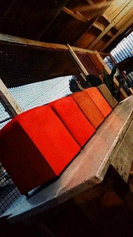 Vendo sofá e reformo  - Foto 6