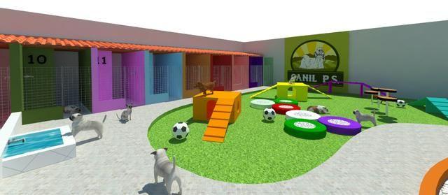 Canil PS tem hotel para cães e gato