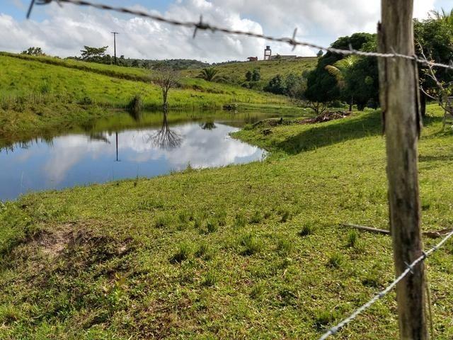 9 hectares nas Margens da BR 232 a 25 km de Recife PE - Foto 12
