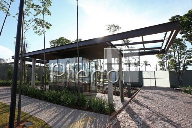 Terreno à venda em Sousas, Campinas cod:TE007804 - Foto 13
