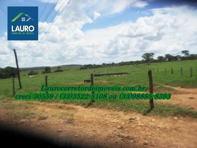 Fazenda com 1.000 hectares na Região de Curvelo-MG - Foto 8