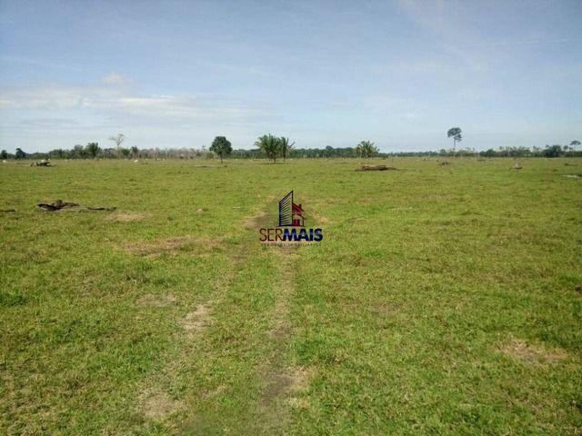 Fazenda à venda, por R$ 3.888.000 - Zona Rural - São Francisco do Guaporé/RO - Foto 6