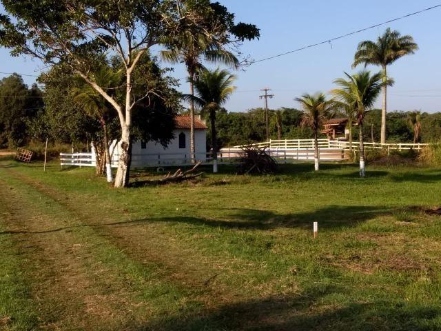 - Terrenos localizados à 1km da Rodovia Amaral Peixoto - Foto 3