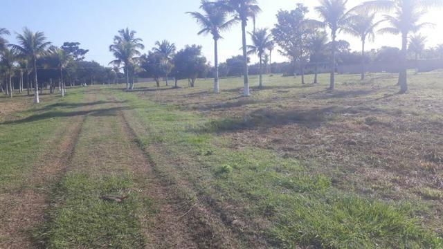 - Terrenos localizados à 1km da Rodovia Amaral Peixoto - Foto 2