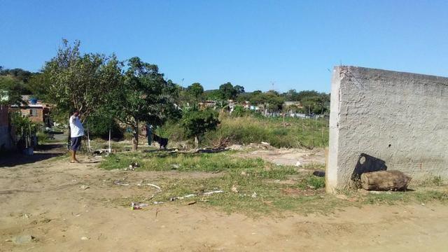 Jô - Lote no Bairro Monte Alegre - Foto 4