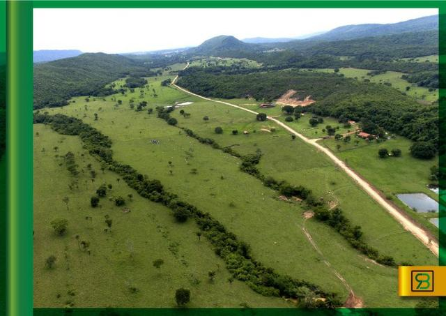 Fazenda em Cáceres - Foto 5