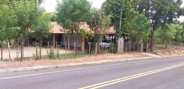 Vendo Sitio no Povoado Felicidade Municipio de Jose de Freitas