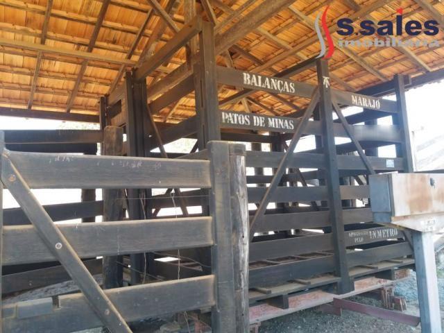 Chácara à venda com 4 dormitórios em São romão, São romão cod:FA00003 - Foto 15