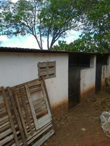Sitio formado com toda infraestrutura, Zona Rural 65km de Recife - Foto 8