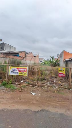 Terreno à venda em Rio pequeno, São josé dos pinhais cod:155977 - Foto 3