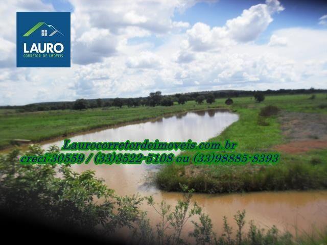 Fazenda com 1.000 hectares na Região de Curvelo-MG - Foto 15