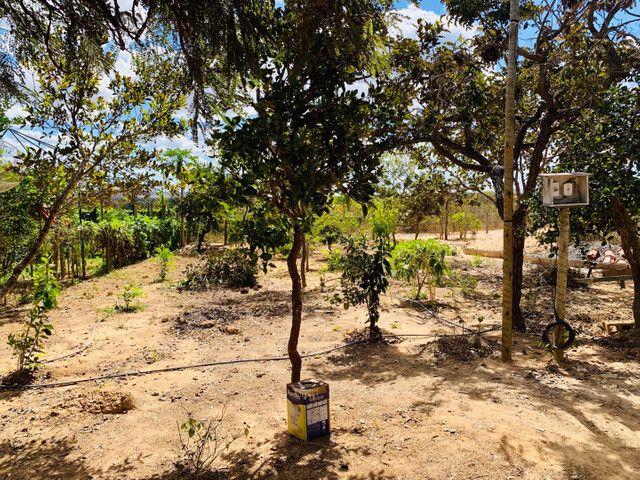 Vendo Rancho 2 quartos um suíte regiao Três Marias - Foto 3
