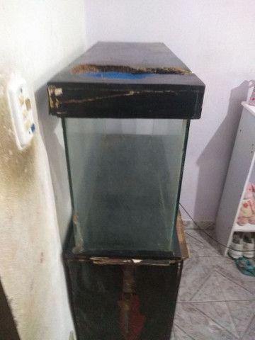 Aquário para peixes mais cômoda gratis  - Foto 4