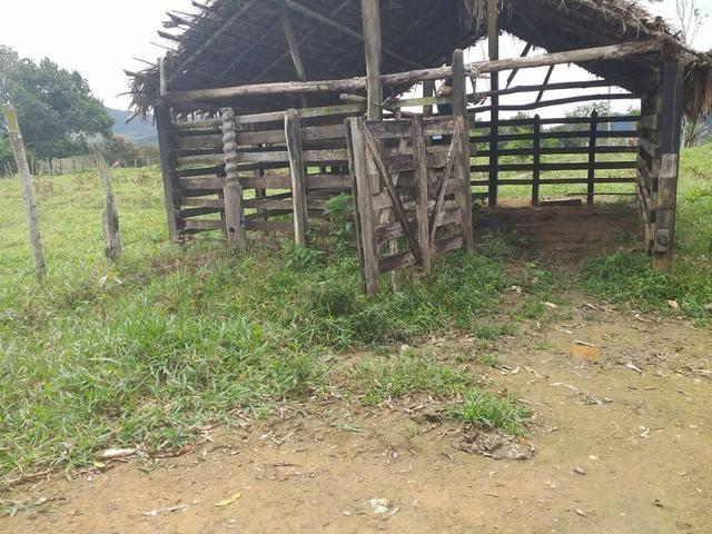 Vendo sitio em Apuarema ba - Foto 5