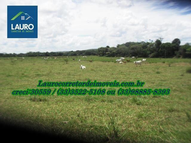 Fazenda com 1.000 hectares na Região de Curvelo-MG - Foto 10