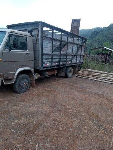 Caminhão boaideiro, transporte animais, carga viva
