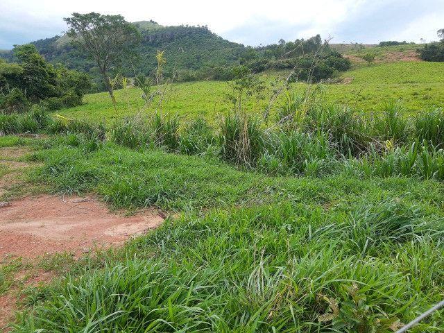 Fazenda em capetinga 92 alqueires 5.000.000.00 - Foto 20