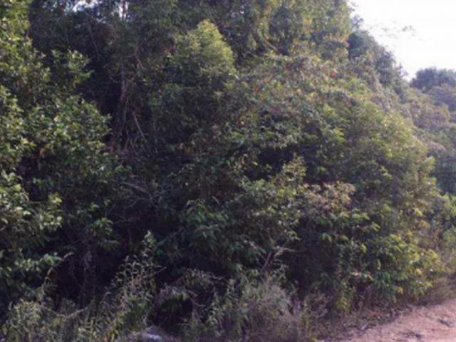 Terreno à venda em Trancoso, Porto seguro cod:J49351 - Foto 3